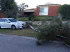 Oliver Kellett's car narrowly avoided becoming a storm casualty. Picture: OLIVER KELLETT